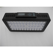 EverGrow IT2040 LED