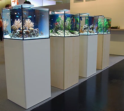 Elos System Mini Without Light Barrier Reef Aquariums